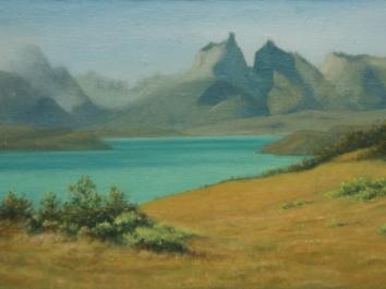Patagonia Study 1