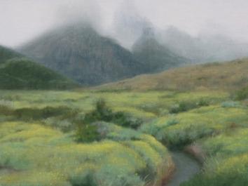 Patagonia Study 15