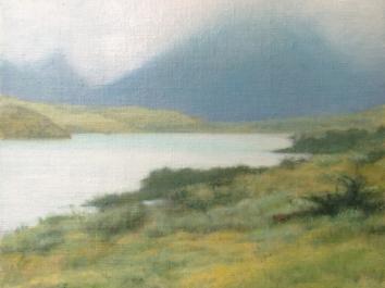 Patagonia Study 3