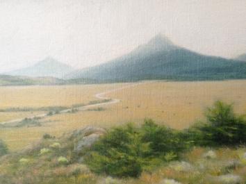 Patagonia Study 4